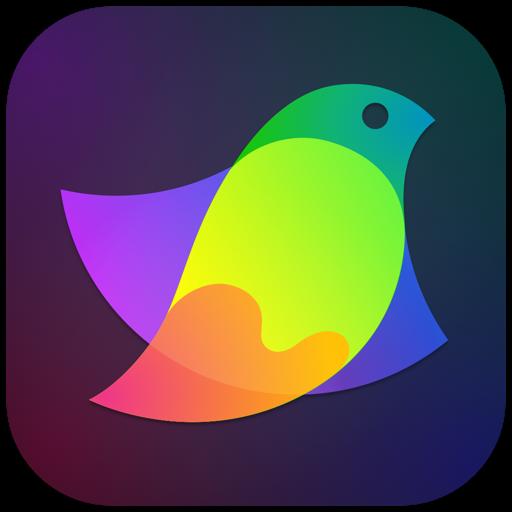 Amadine - Vector Graphics App