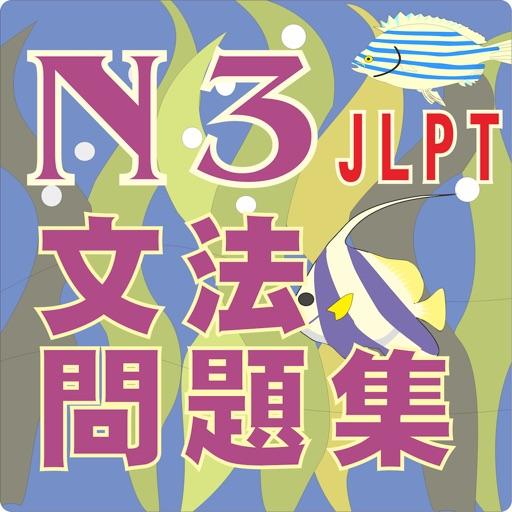 N3-文法問題集