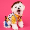 Pets In Costume Reviews