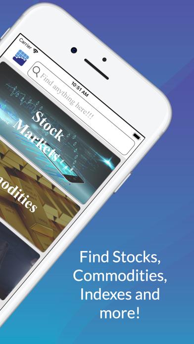 Screenshot of Stock Evaluator1