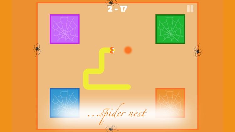 Carrier Snake - Spider Nest