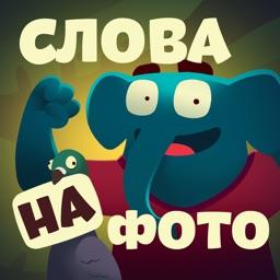 Фотослон - слова и картинки