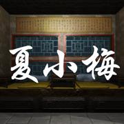 孙美琪疑案:夏小梅(中国版)
