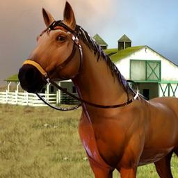 My Caring Horses Farm Pony 3D