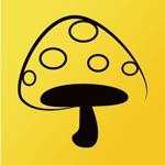 蘑菇丁-工学云实习、求职
