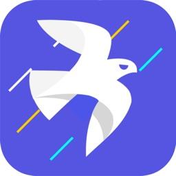 飞鸽加速器-海外华人回国加速器
