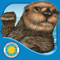 App Icon for Otter on His Own - Smithsonian App in Panama IOS App Store