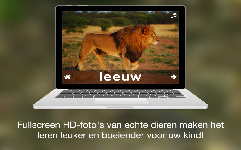 ABC Dutch Dieren for Mac