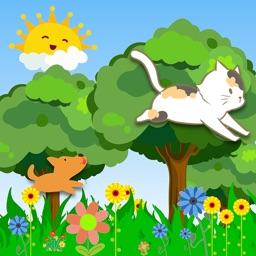 Run Kitty Kitty Run
