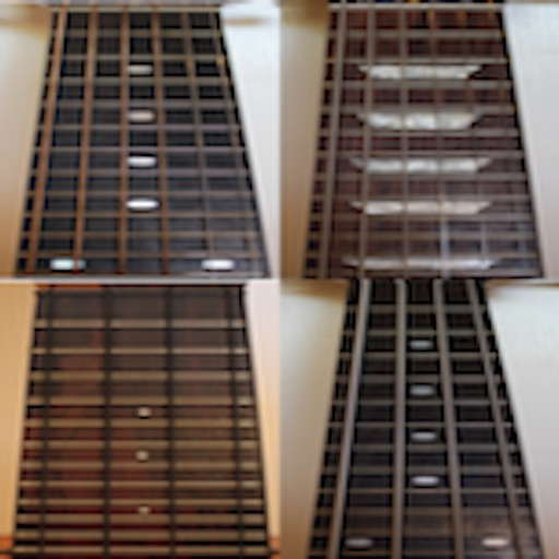 Super Guitar Fretboard Addict