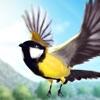 飛ぶ鳥 3D