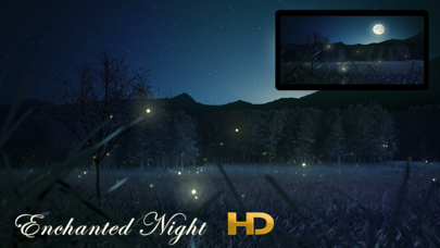 点击获取Enchanted Night HD