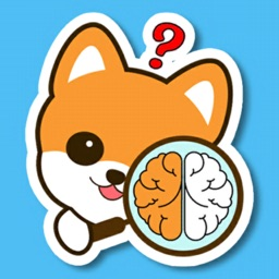 Brain Games: IQ Test With Dogs