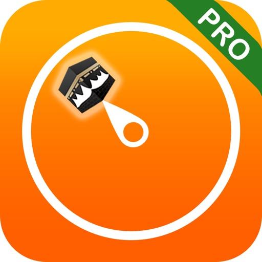 Qibla Compass & Locator Pro