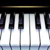 ピアノ 鍵盤 リアル