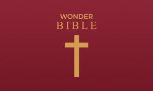 Wonder Bible™