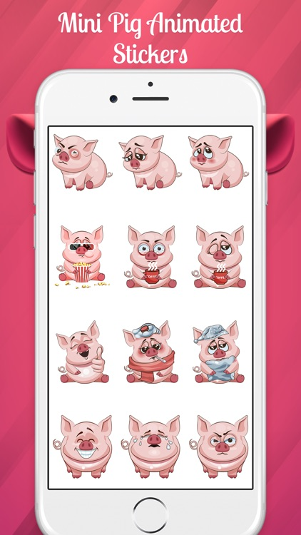 The Miniest Pig