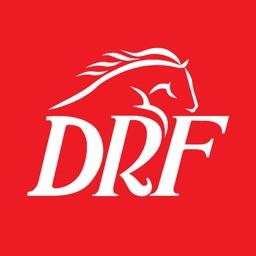 DRF Horse Racing Betting