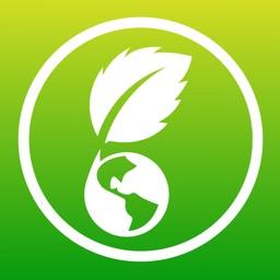 BonGEO Travel App
