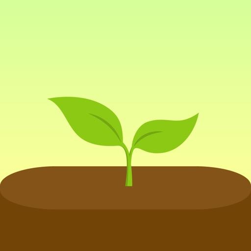 Forest - Odaklan inceleme, yorumları ve Üretkenlik indir