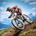 Bicycle Stunts: BMX Bike Games на пк