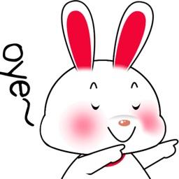 粉红兔来啦