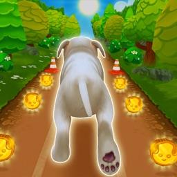 Pet Run - Puppy Dog Run Game