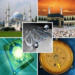 Tam İslam