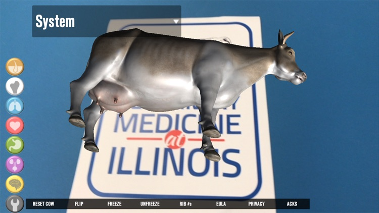 Illinois Cow screenshot-3
