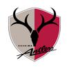 KASHIMA ANTLERS FOOTBALL CLUB CO., LTD. - 鹿島アントラーズ 公式アプリ アートワーク