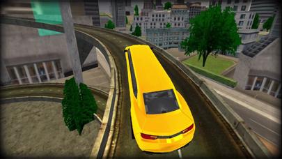 リムジン運転スタントカードライバーのおすすめ画像4