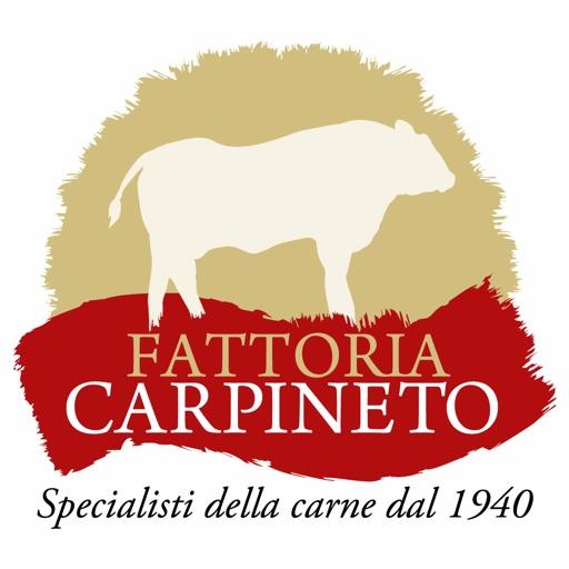 Fattoria Carpineto