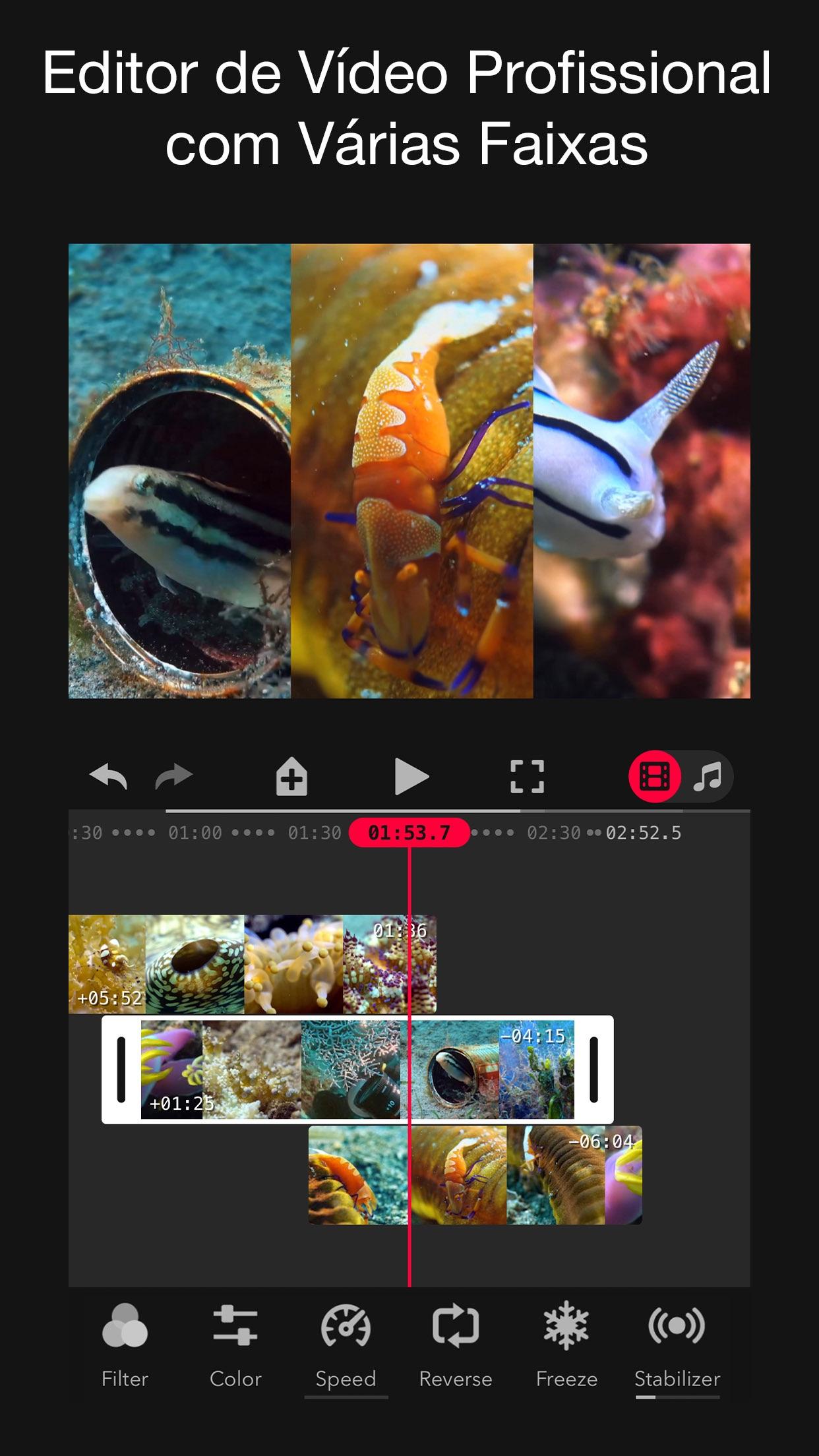 Screenshot do app Focos Live