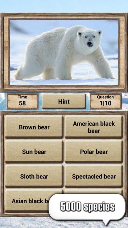 Animal Kingdom - Quiz Game