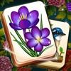 Mahjong Blossom+アイコン
