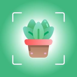 plant identifier & find info