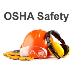 OSHA Safety Regs Audits Issues