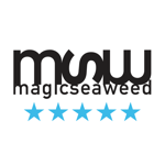 MSW Surf Forecast на пк
