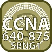 Codes for CCNA 640 875 SPNGN1 for Cisco Hack