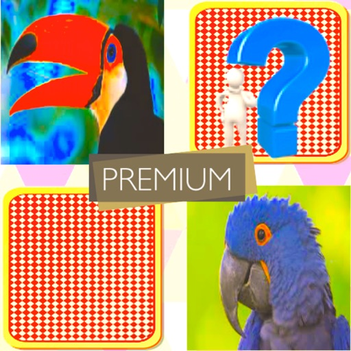 Match Card Pair : Premium!