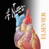 Netter's Anatomy Atlas 7e - Elsevier Inc.