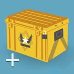 Case Opener - skins simulator pour pc
