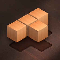 Fill Wooden Block 1010