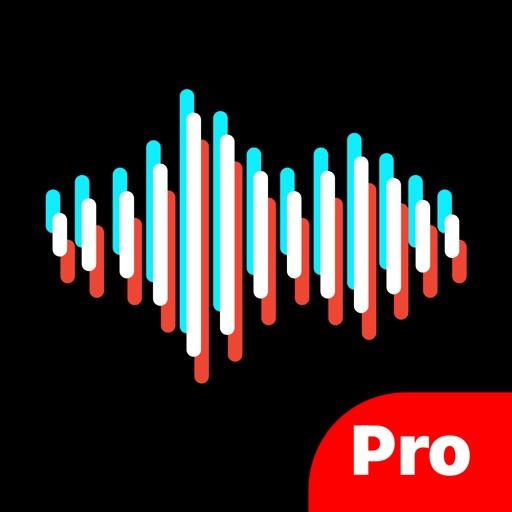 SpeechTok Pro