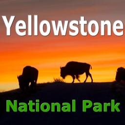 Yellowstone National Park Map!