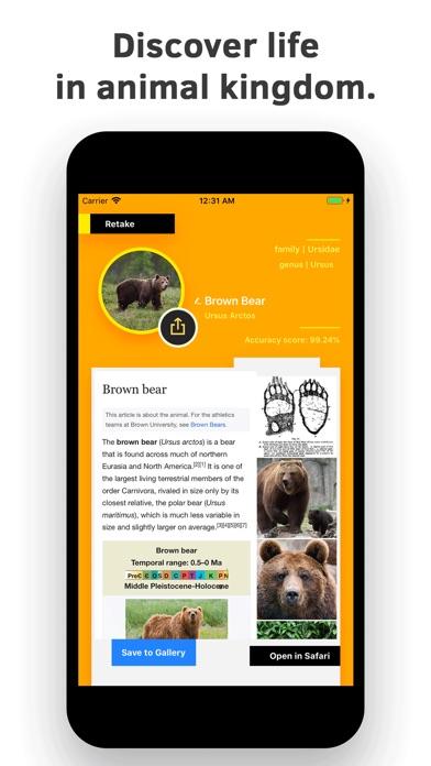 Animal Identifier. screenshot 2