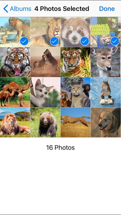 Random Image Select