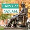 Harvard Campus Cambridge Tour