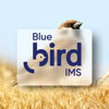 Blue Bird IMS