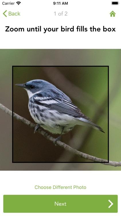 Merlin Bird ID by Cornell Lab screenshot-5